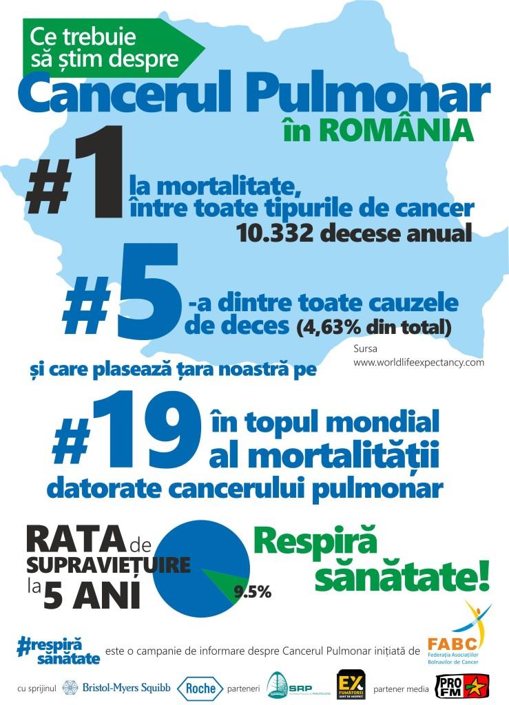 fact sheet Cancer Pulmonar 2015
